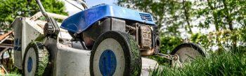 Ausführung, Auslichtungen, Baumbegutachtungen, Baumbepflanzung, Baumfällungen, Baumkontrolle, Baumpflege, Bepflanzungen, Beratung, Betreuung, Bewässerung, Blumen gießen, Blumen schneiden, Blumenbepflanzung, Blumenschnitt, Bodenauflockerung, Bodenanalyse, Bodenaustausch, Bodendüngung, Einkürzungsschnitt, Entsorgung von Grünabfällen, Entsorgung von Schnittgut, Fertigrasenverlegung, Formgehölzschnitt, Formrückschnitt, Formschnitt, Gartenarbeiten jeglicher Art, Gartenbau, Gartenbewässerung, Gartenpflege , Gehölzpflege, Gehölzschnitt, Grünflächenpflege, Grünschnittentsorgung, Gießservice, Gehölzpflege, Gehölzschnitt, Grünflächenbewässerung, Grünschnittentsorgung, Häckselarbeiten, Hecken schneiden, Hecken stutzen, Heckenschnitt, Kehrarbeiten, Laubbeseitigung, Laubentfernung, Moosbeseitigung, Moosentfernung, Mulchen, Nachsaat, Neuanpflanzungen, Neusaat, Obstbaumschnitt, Obstgehölzschnittt, Pflanzenbewässerung, Pflanzenentfernung, Pflanzentfernung, Pflanzenschnitt, Pflanzbewässerung, Pflanzschnitt, Pflanzung, Planung, Püsterarbeiten, Pusterarbeiten, Rabattenpflege, Rasen aerifizieren, Rasen mähen, Rasen sprengen, Rasen vertikutieren, Rasenbewässerung, Rasendüngung, Raseneinsaat, Rasenkante schneiden, Rasennachsaat, Rasenpflege, Rasenschnitt, Rollrasenbeschaffung, Rasenvertikuierung, Rollrasenverlegung, Rosenschnitt, Rückschnitt, Sichtbepflanzung, Sichtschutzbepflanzung, Solitärbepflanzung, Staudenbepflanzung, Staudenschnitt, Strauchschnitt, Sturmschadenbeseitigung, Totholzentfernung, Unkrautentfernung, Urlaubsbewässerung, Urlaubsvertretung, Verjüngungsschnitt, Vertikutieren, Walzen der Rasenfläche, Walzen von Grünflächen, Wechselbepflanzungen, Wildkräuterbekämpfung, Wildkräuterentfernung, Windschutzbepflanzung, Winterschutz, Wurzelentfernung, Ziergehölzschnitt